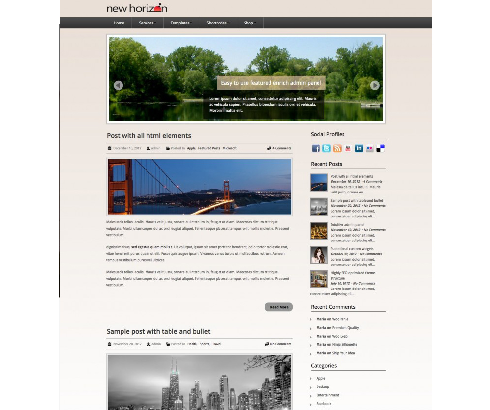 New Horizon WordPress Themes