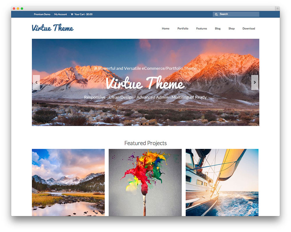 Virtue WordPress Themes Download