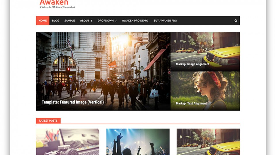 Awaken WordPress Themes Download