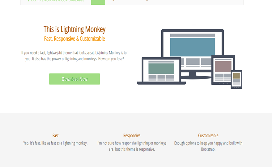 Lightning Monkey WordPress Theme