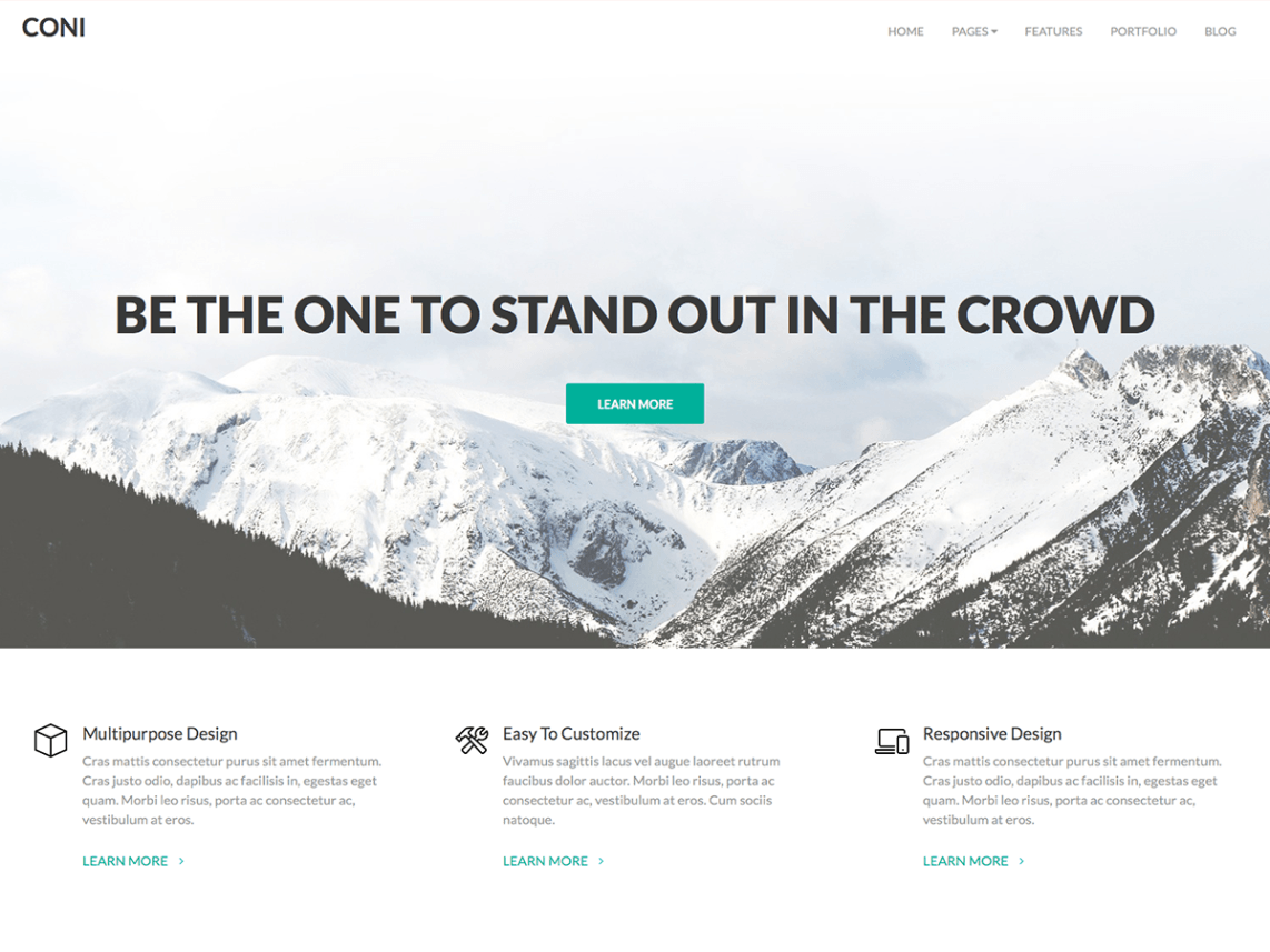 Coni WordPress Theme