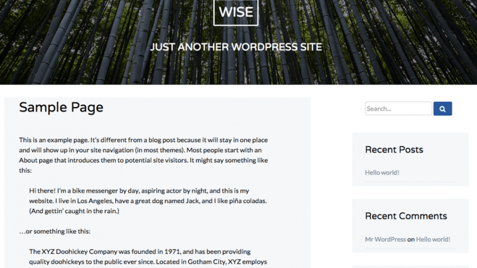 Wise WordPress Theme Download