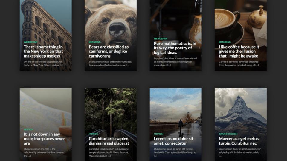 Caos WordPress Theme