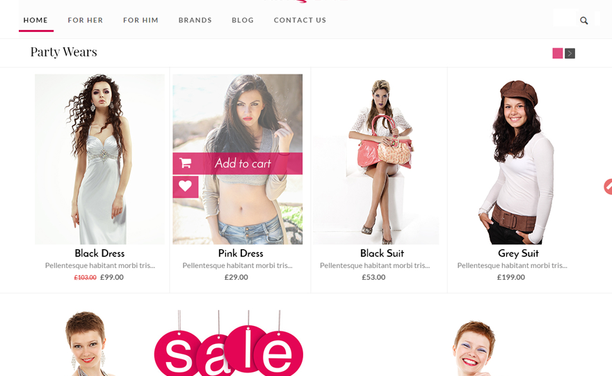 FashStore WordPress Theme Download