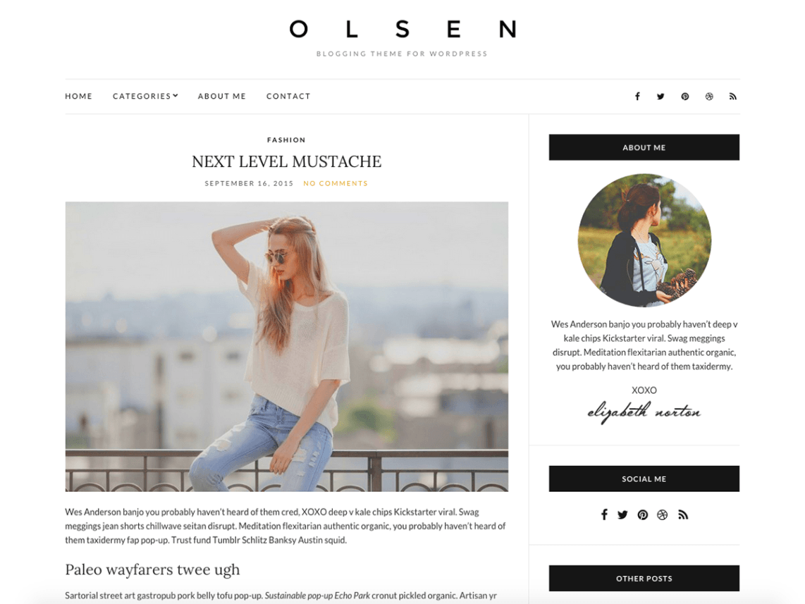 Olsen Light WordPress Theme Download