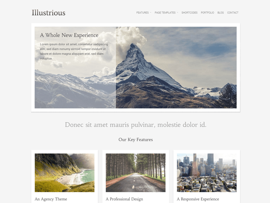 Illustrious WordPress Theme Download