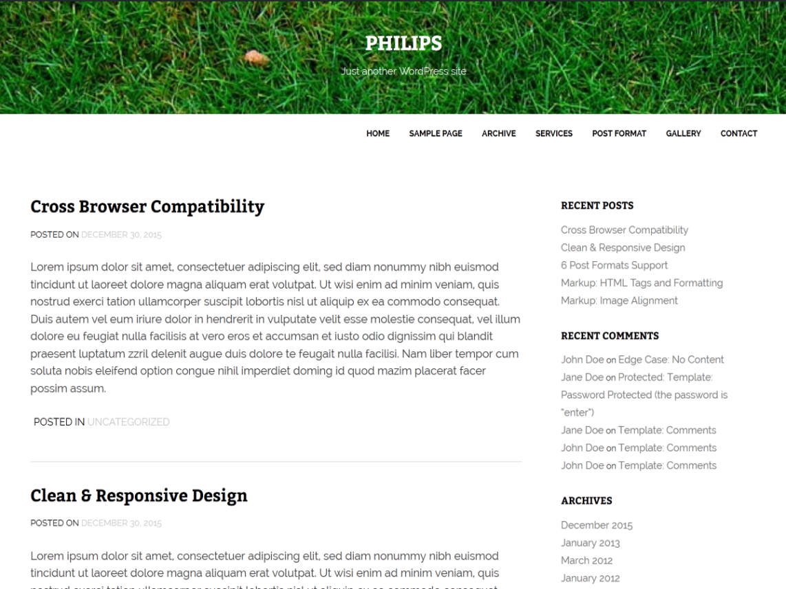 Philips WordPress Theme Download