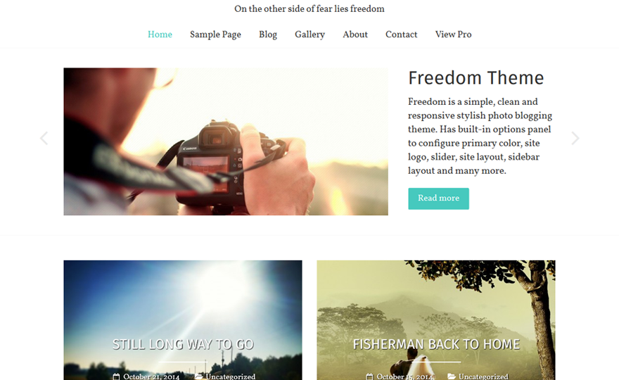 Freedom WordPress Theme