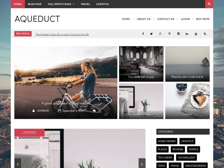 Aqueduct WordPress Theme