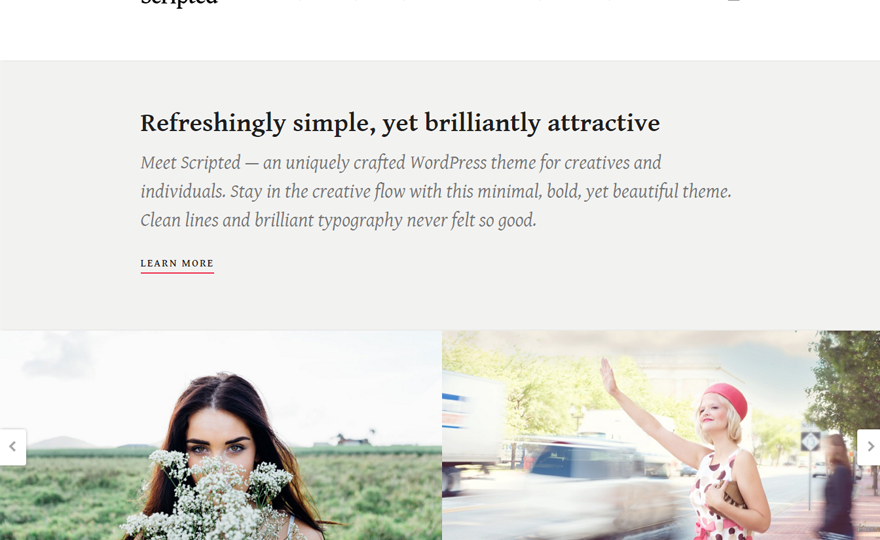 Scripted WordPress Theme Download