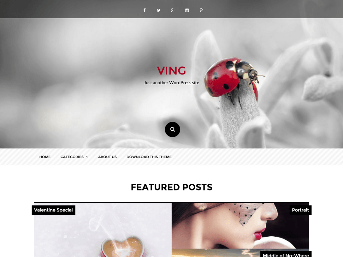 Ving WordPress Theme