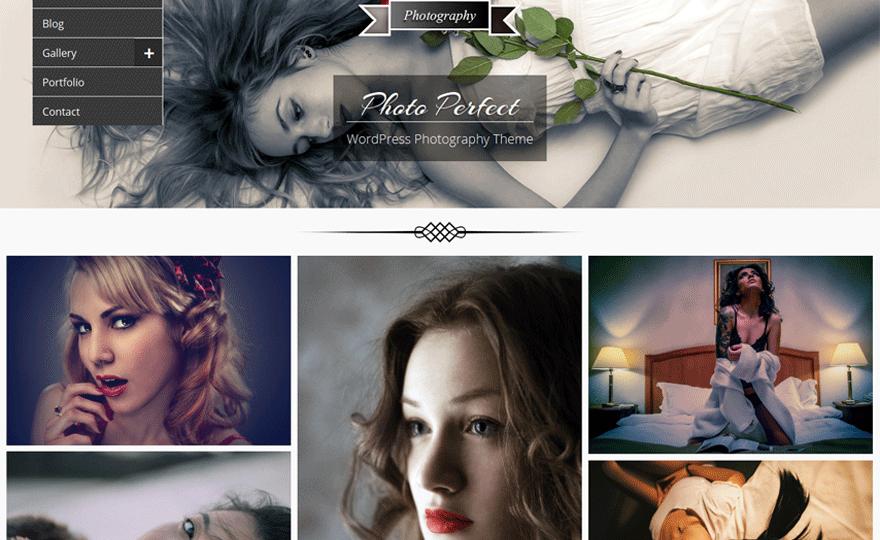 Photo Perfect Theme Download