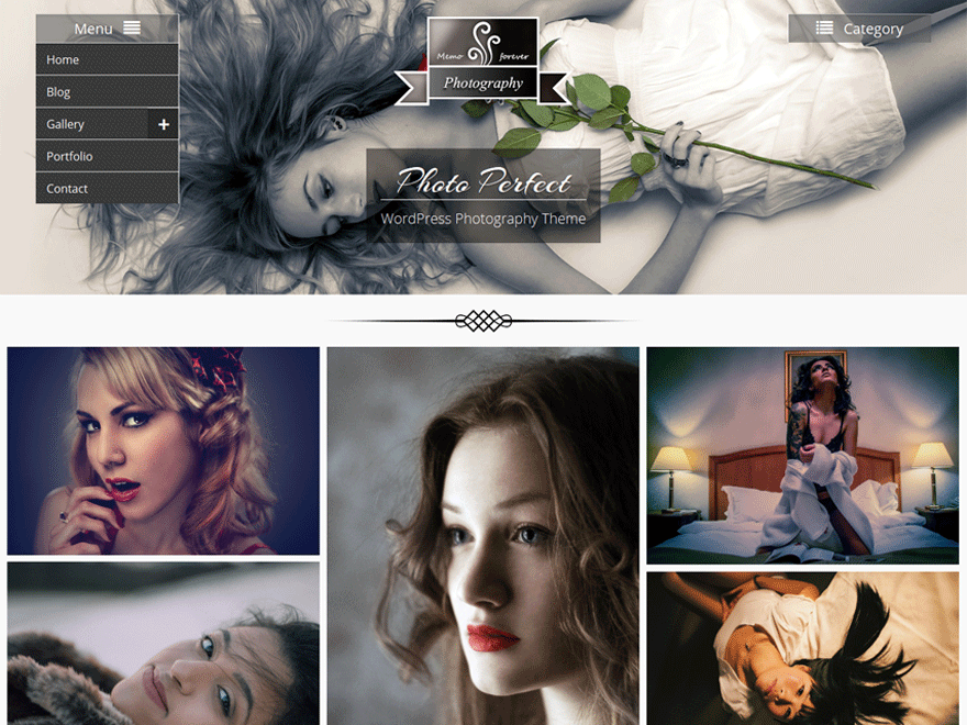 Photo Perfect Theme Download