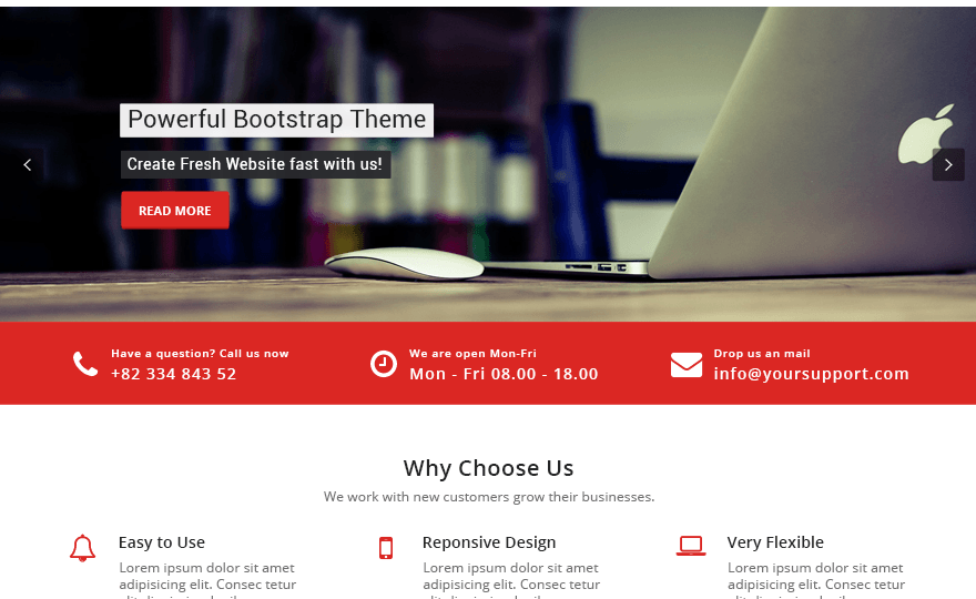 Appointment Red WordPress Theme