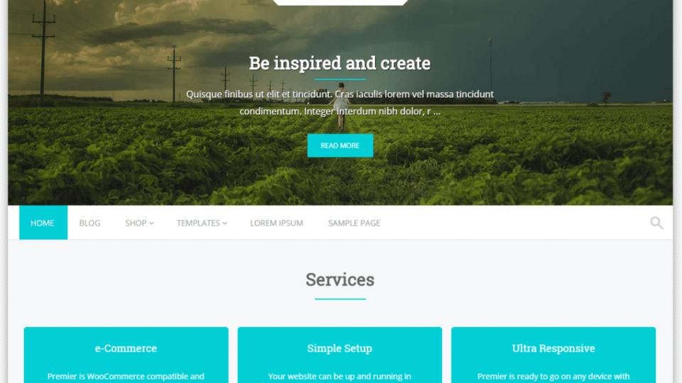Premier WordPress Theme