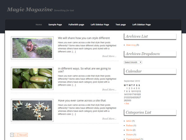 Magic Magazine WordPress Theme