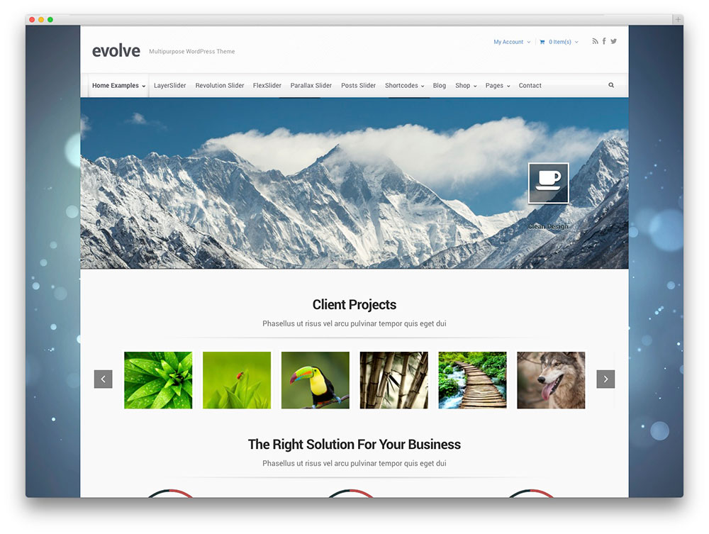 Evolve Themes Download