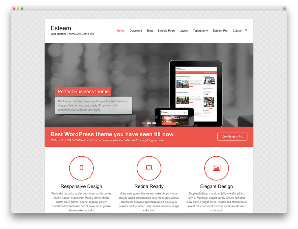 Esteem WordPress Themes Download