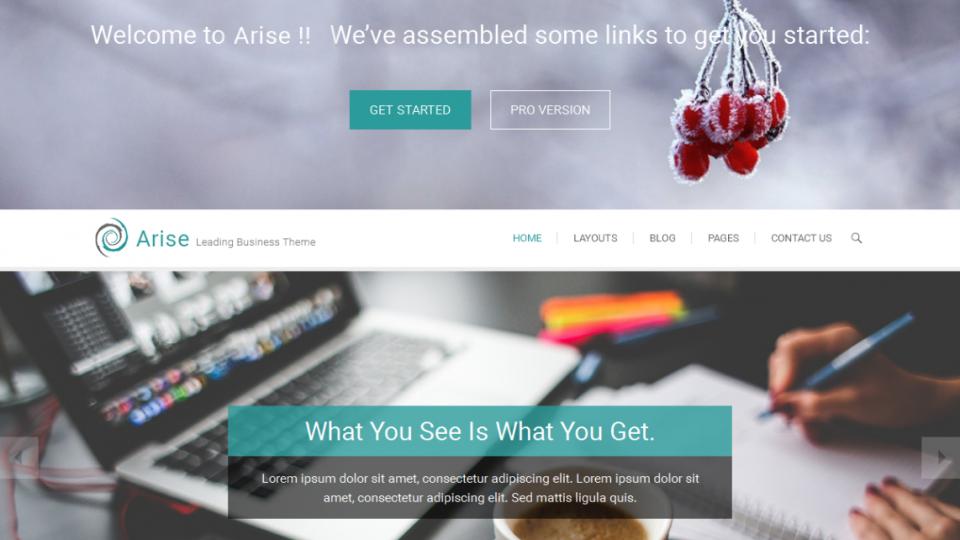 Arise WordPress Theme