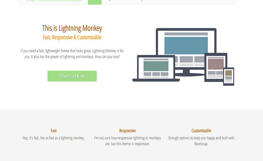 Lightning Monkey WordPress Theme