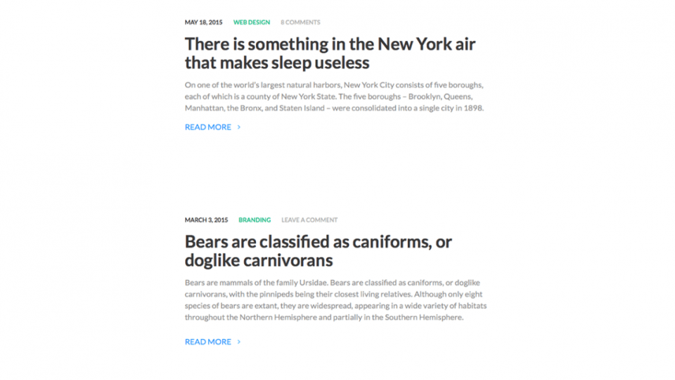 Reyl Lite WordPress Theme