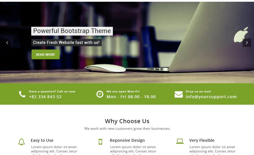 Appointment Green WordPress Theme