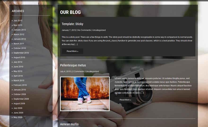 FashionBuzz WordPress theme