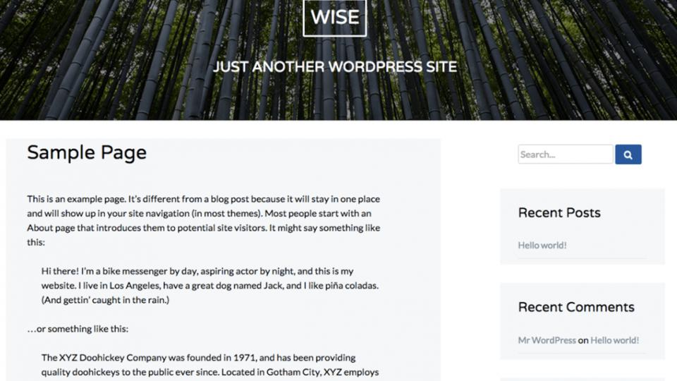 Wise WordPress Theme Download