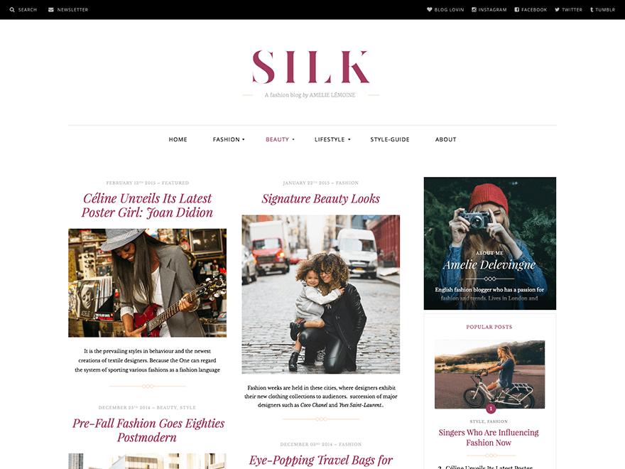 Silk Lite Free WordPress Theme
