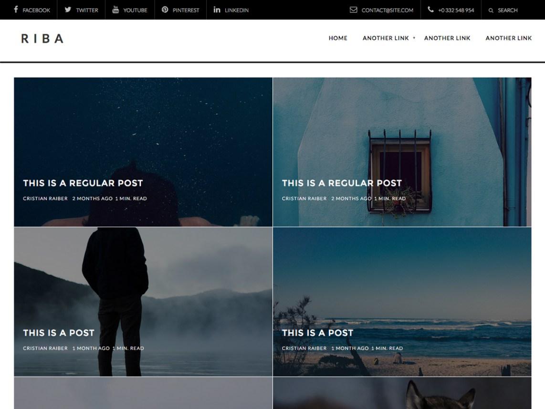 Riba Lite WordPress Theme