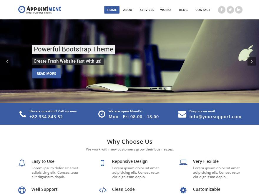 Appointment Blue WordPress Theme