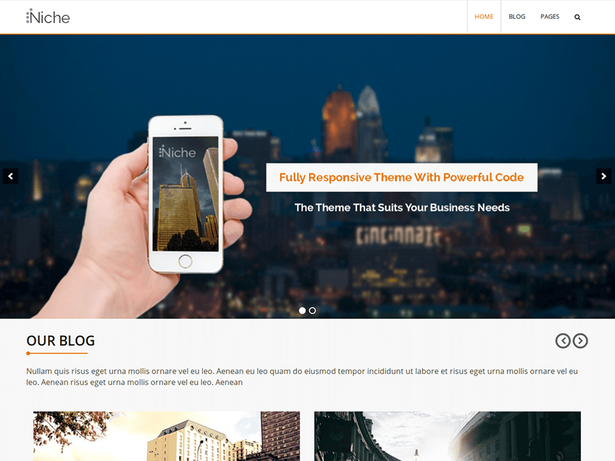 Niche WordPress Theme